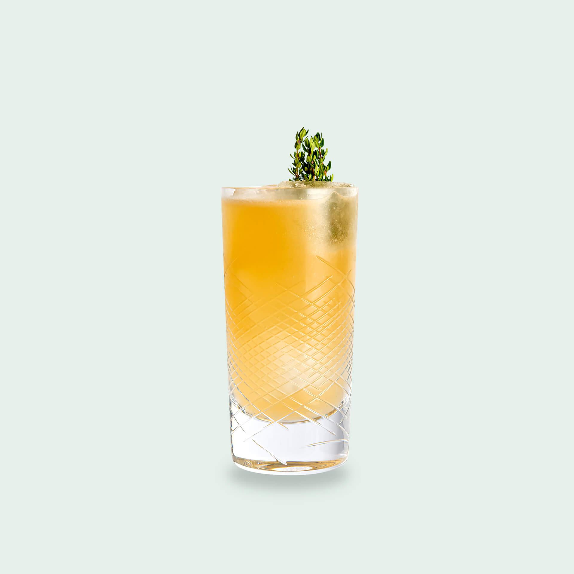 Gin und Tee Set: Roi Buck Drink Syndikat