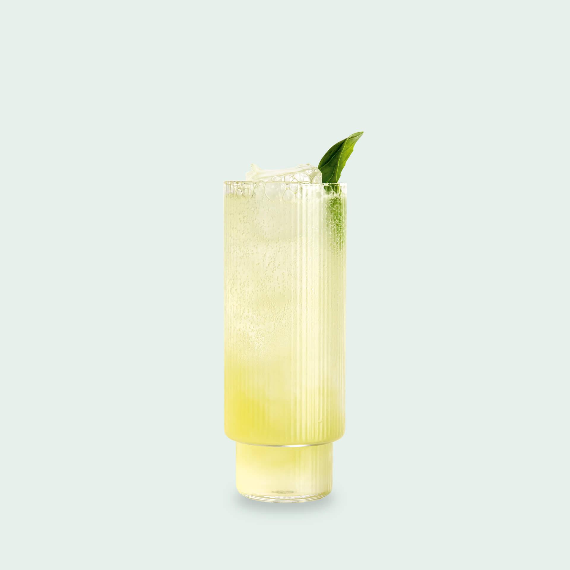 Aus dem Gin Tasting Set