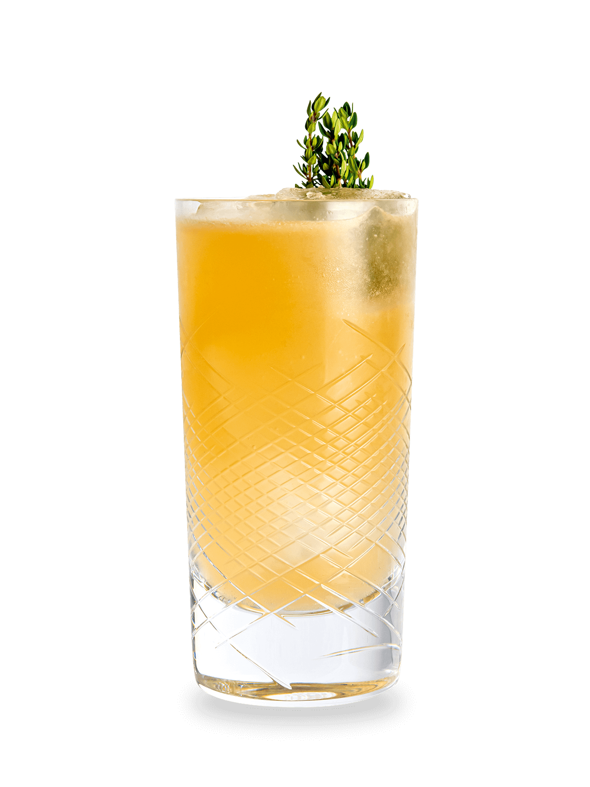 Cocktail Rezept Roi Buck Elephant Gin