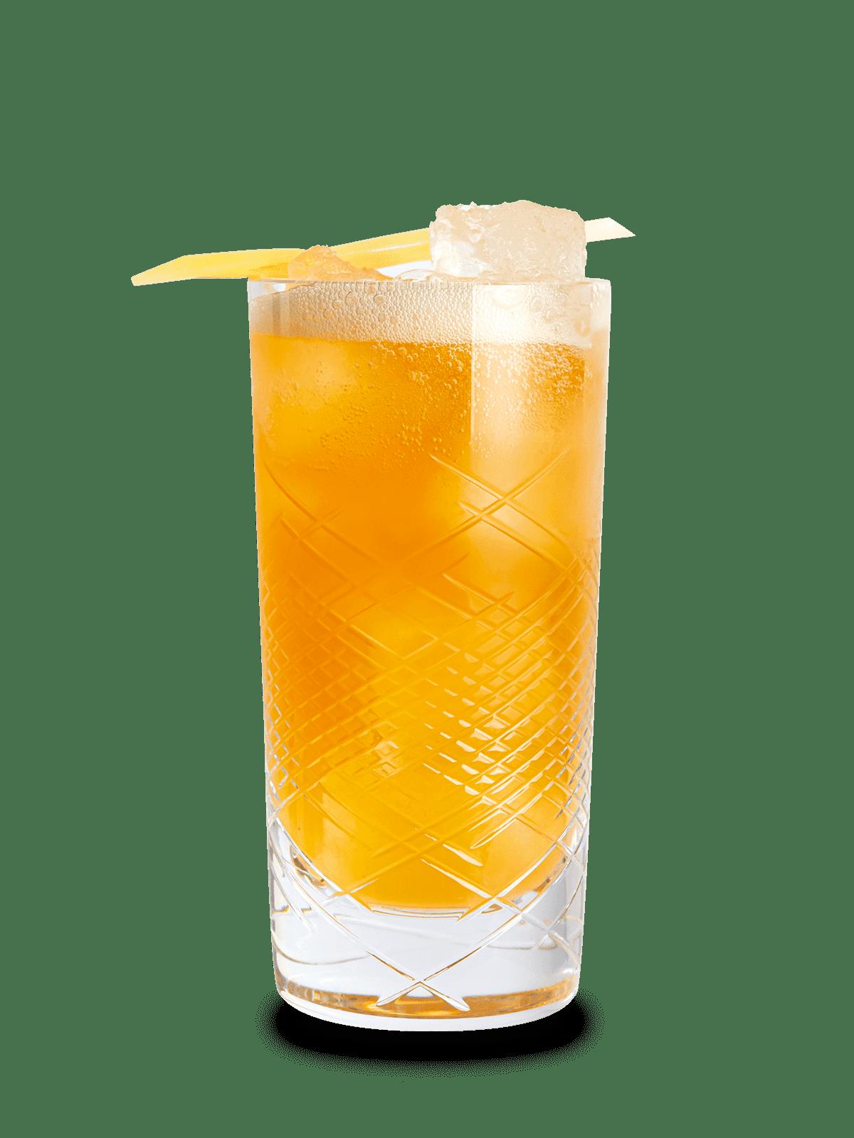 Rye Whiskey Cocktail Rezept Rye and Ginger mit 1776 Rye
