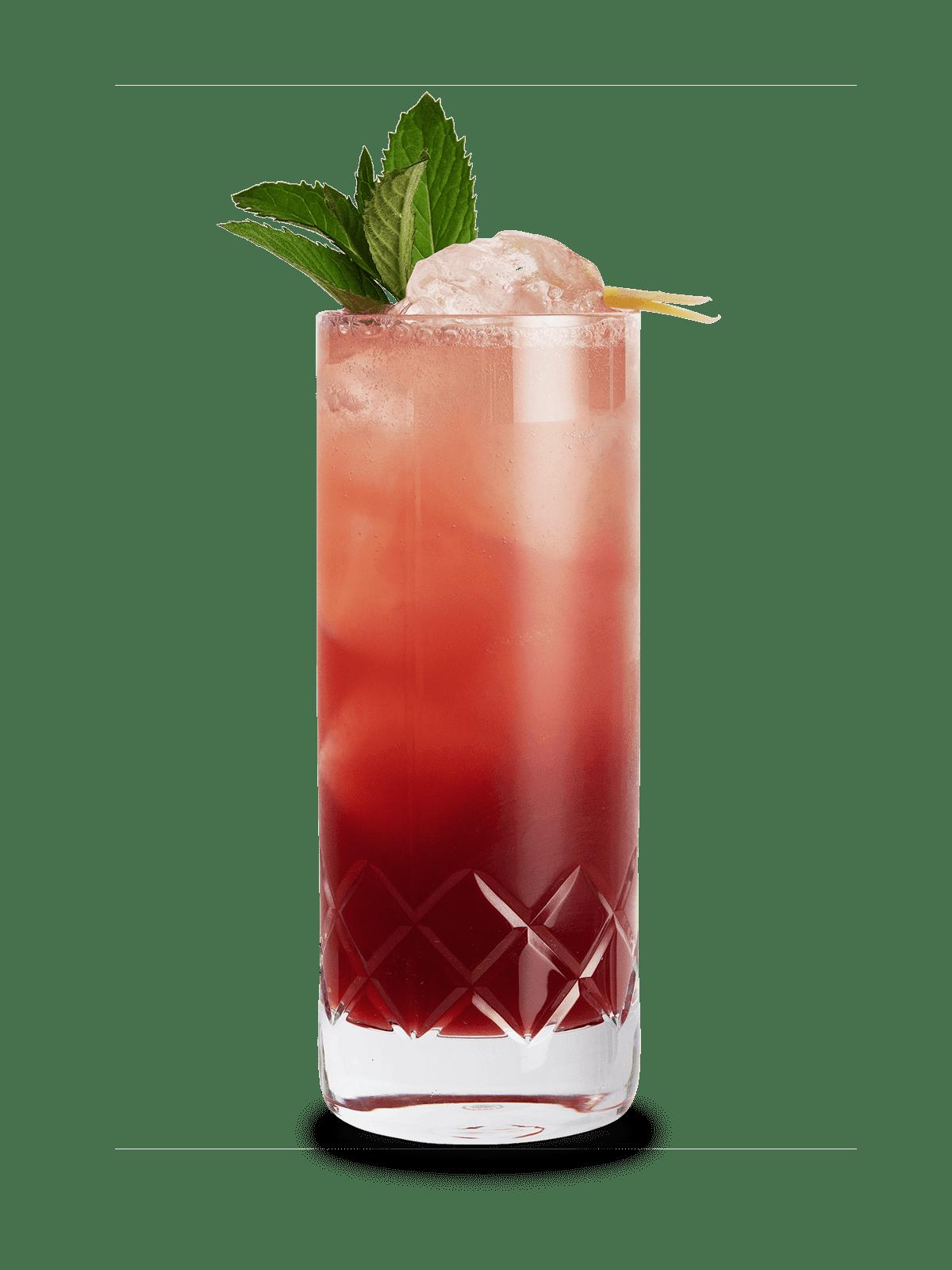 Wildberry Mule