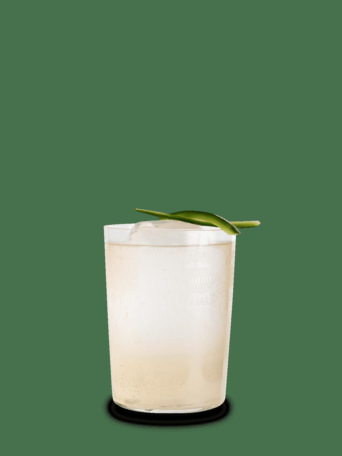 Shunga Cocktail Rezept