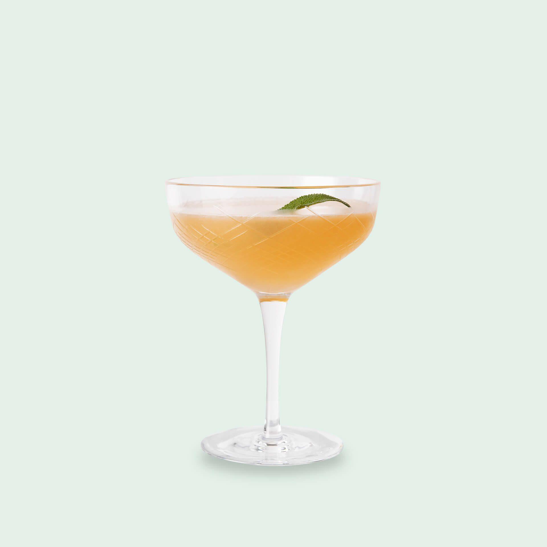 Rum Cocktail Daiquiri mit Salbei aus dem Rum Cocktail Set von Drink Syndikat